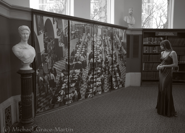 Busts in a Library by Michael Grace-Martin