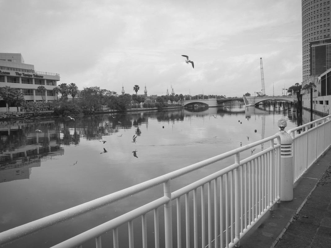 Tampa Riverwalk, Florida (Feb 2014)